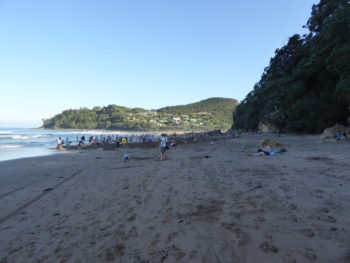 Coromandel Halbinsel Hot Water Beach