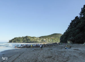 Coromandel Hot Water Beach